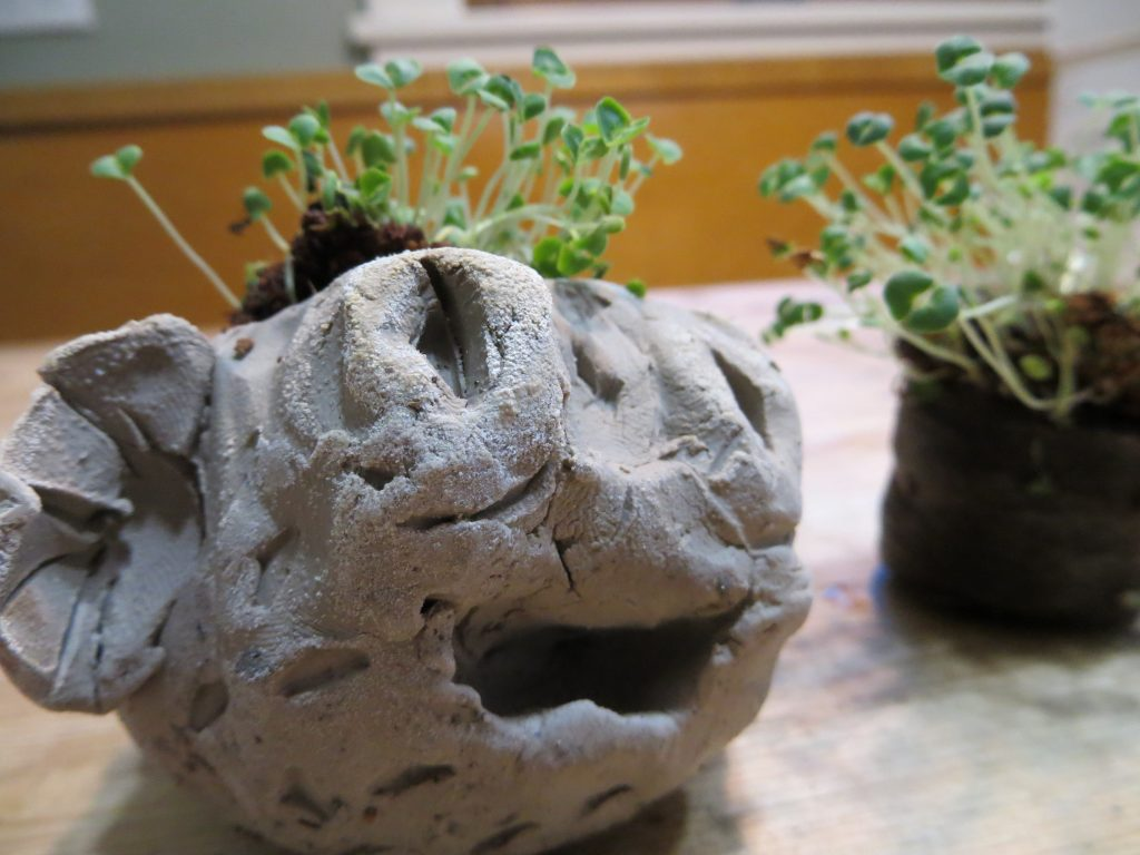 Homemade Chia Pet -KitchenPantryScientist.com
